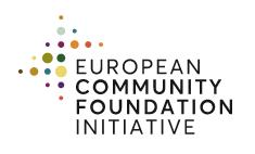 European Community Foundation Initiative (ECFI): Our Partner for SDG17
