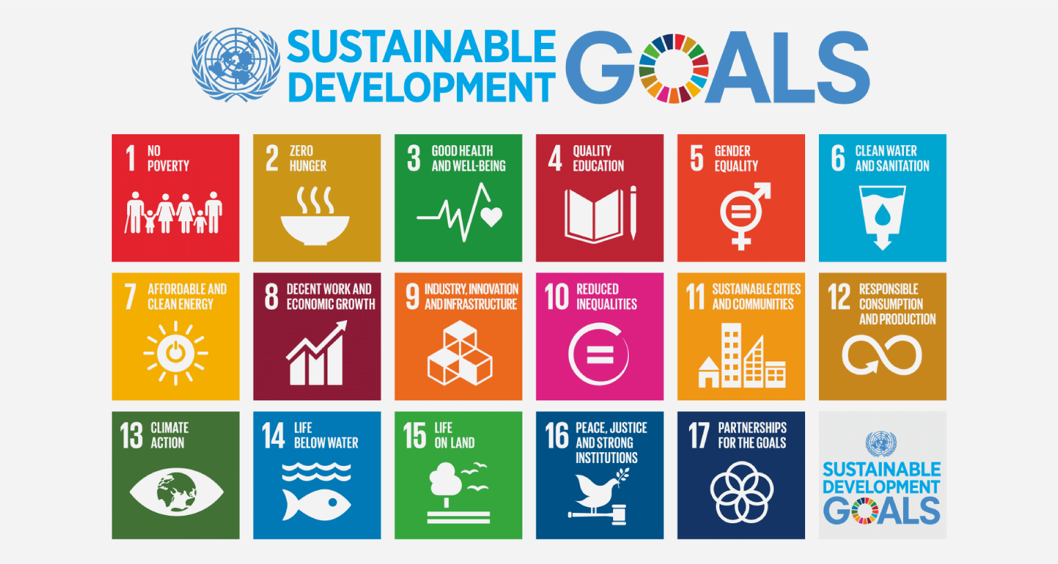 The 17 Sustainable Development Goals adopted by the United Nations General Assembly in 2015