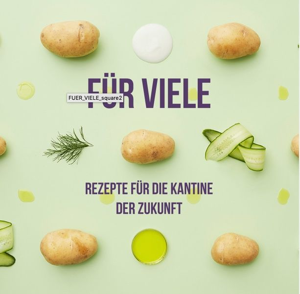 Titelbild Broschüre Kantine Zukunft für nachhaltige Unternehmen, Kartoffeln, Zucchini Kräuter, Kleckse von Öl auf hellgrünem Grund
