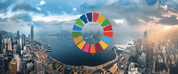 The relevance of the Sustainable Development Goals (SDGs) for companies